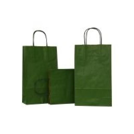 Punga N medie 18x8.5x38 cm verde 311939