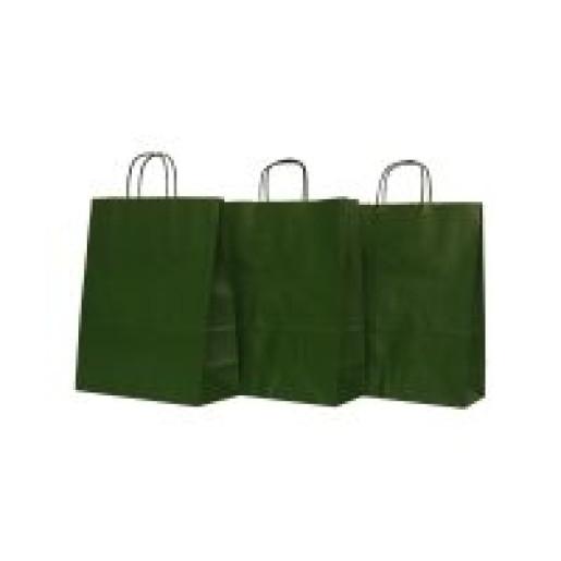 Punga N medie 25x11x31 cm verde 311958