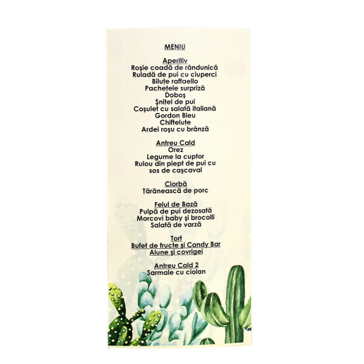 MT93 Crem - Meniu triunghiular cu cactusi acuarela