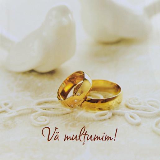 Punga nunta PREMIUM cu porumbei si verighete aurii PT 19