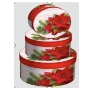 Cutie Carton Rotunda  Craciunita 3/Set CTC173