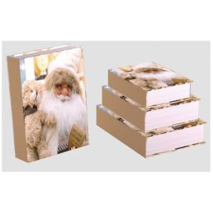 Cutie Carton Carte Bej Mos Craciun 3/Set CTC181