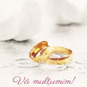Punga nunta alba cu verighete si porumbei PN 10031