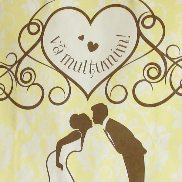 Punga nunta crem cu imprimeu si miri cu maner de hartie rasucit PN 11003