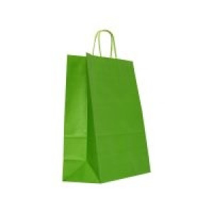 Punga N medie 18x8.5x30 cm verde 3121149
