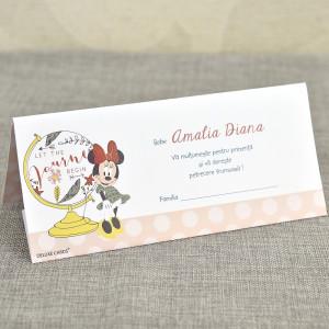 Plic de bani Minnie Mouse 5711 DELUXE