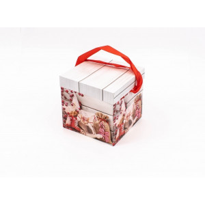 Cutie Carton Patrata Rosu-Gri Mos, Sac CTC161
