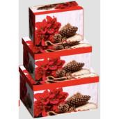 Cutie Carton Dreptunghiulara Floarea Craciunului 3/Set CTC178