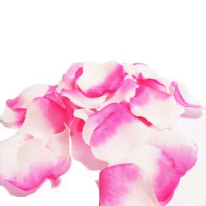 Petale artificiale de trandafiri roz degrade